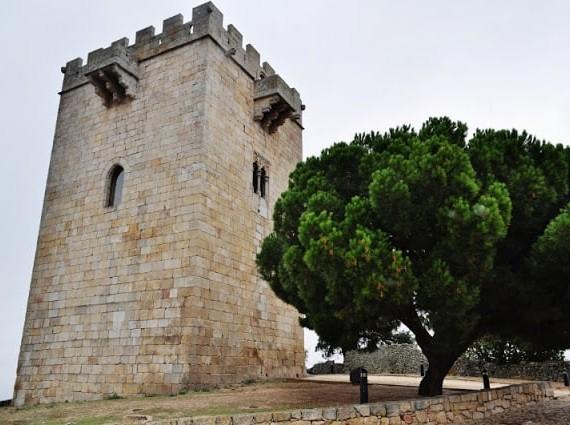 Pinhel a cidade Falcão