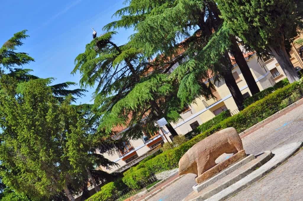 Verraco de Ciudad Rodrigo