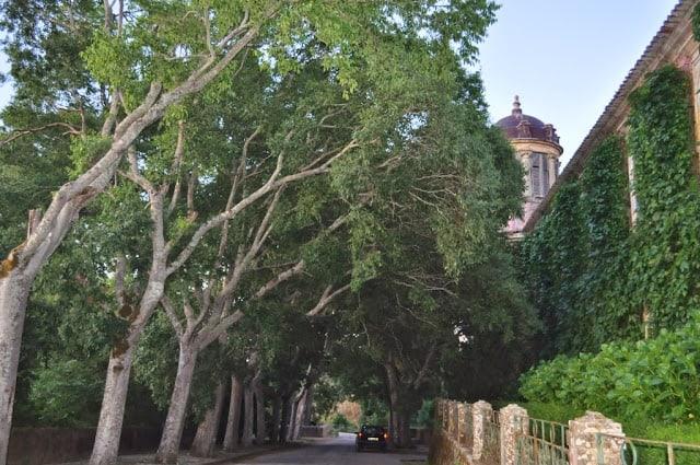 Quinta da Cardiga, perto de Tomar