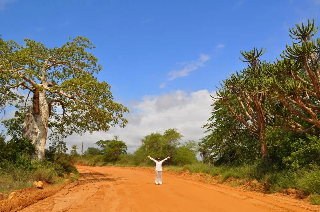 Parque Kissama em Angola