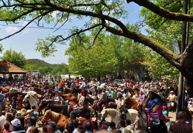Multidão em Mixões da Serra, para a bênção dos animais