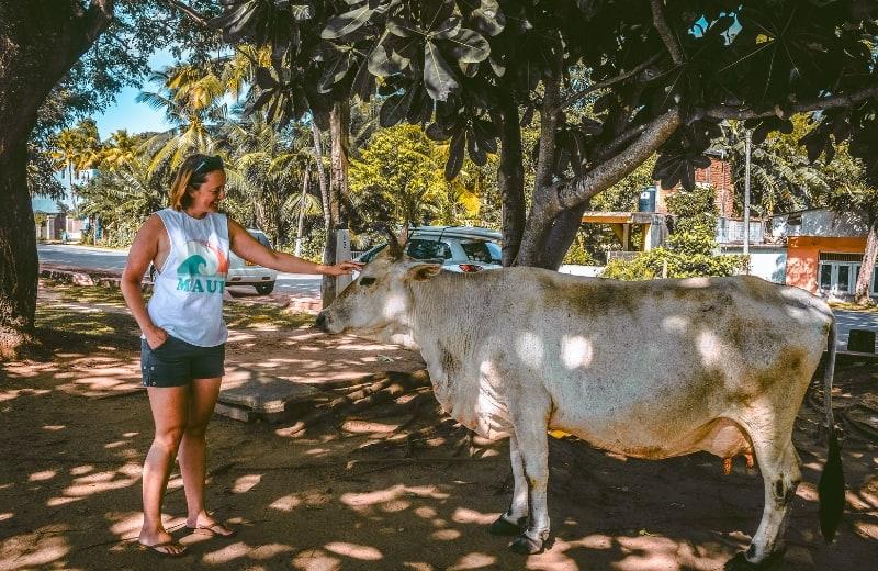 Marlene no Sri Lanka