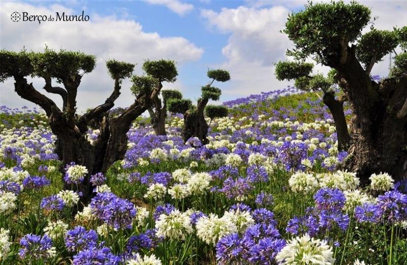 Buda Garden é o maior jardim oriental da Europa