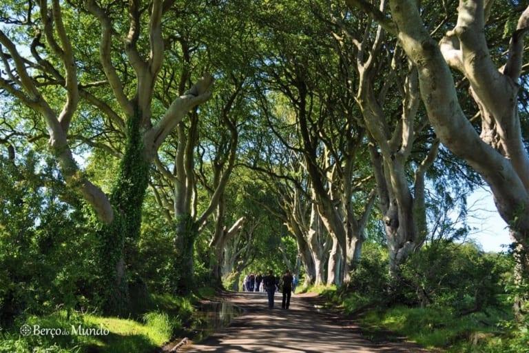 The Dark Hedges, na Irlanda do Norte