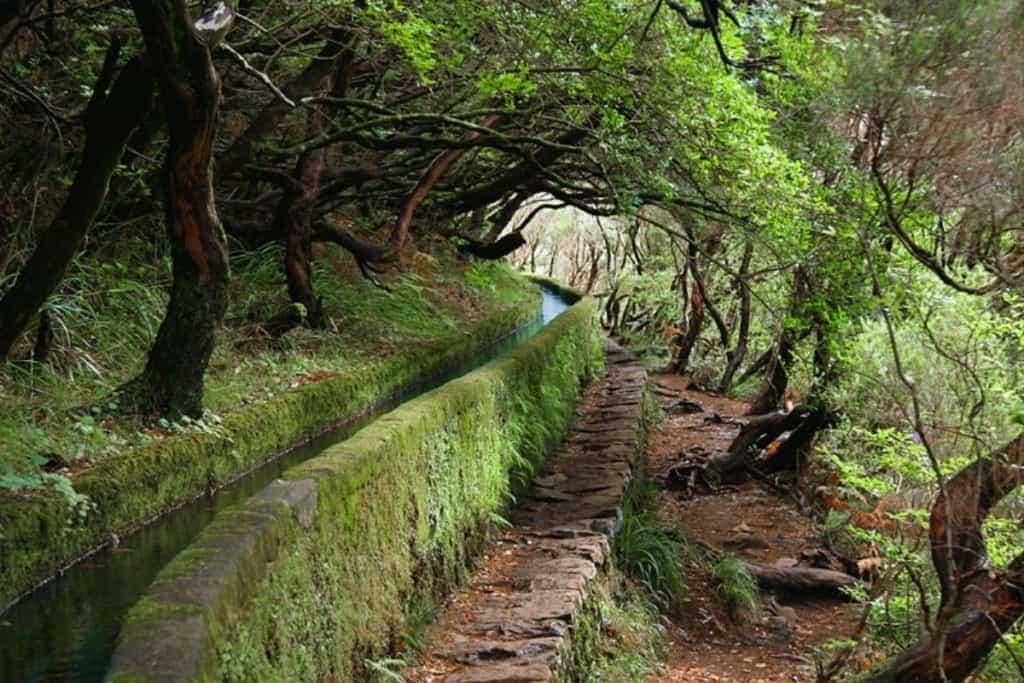 Levadas, uma das maravilhas da natureza da ilha