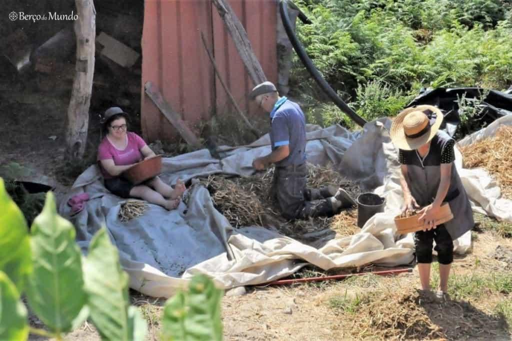 agricultores numa aldeia do Gerês